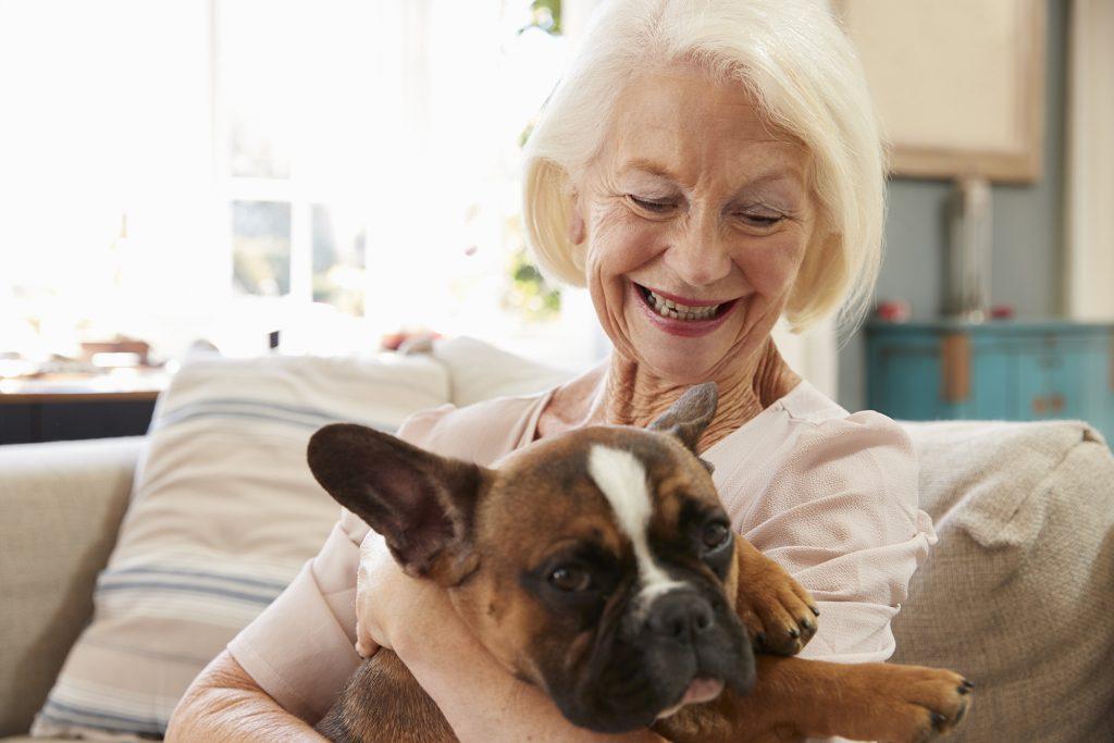 Una mujer adulta mayor en un sofá en su casa con un bulldog francés
