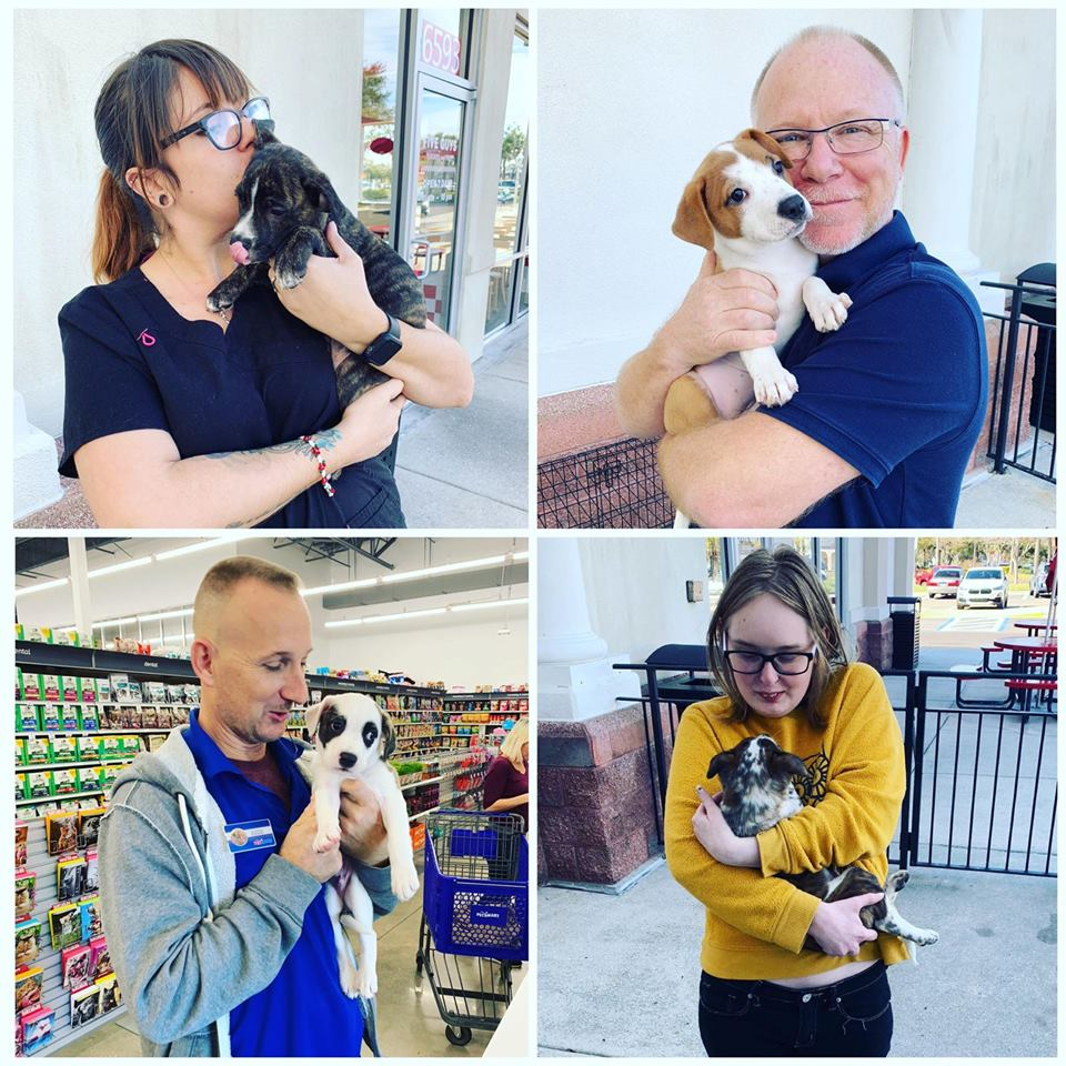 Find your new best friend at Petsmart