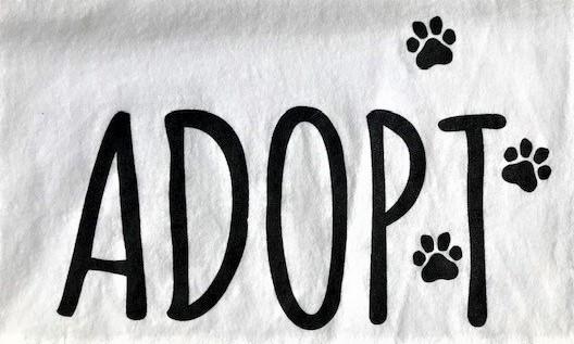 White Adopt Paw prints Tshirt