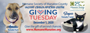 Giving Tuesday Dec 1 2020