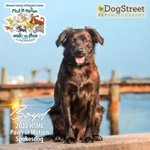 Boyd 2022 paws in motion spokesdog picture with logo