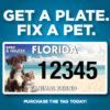 Florida animal friends graphic